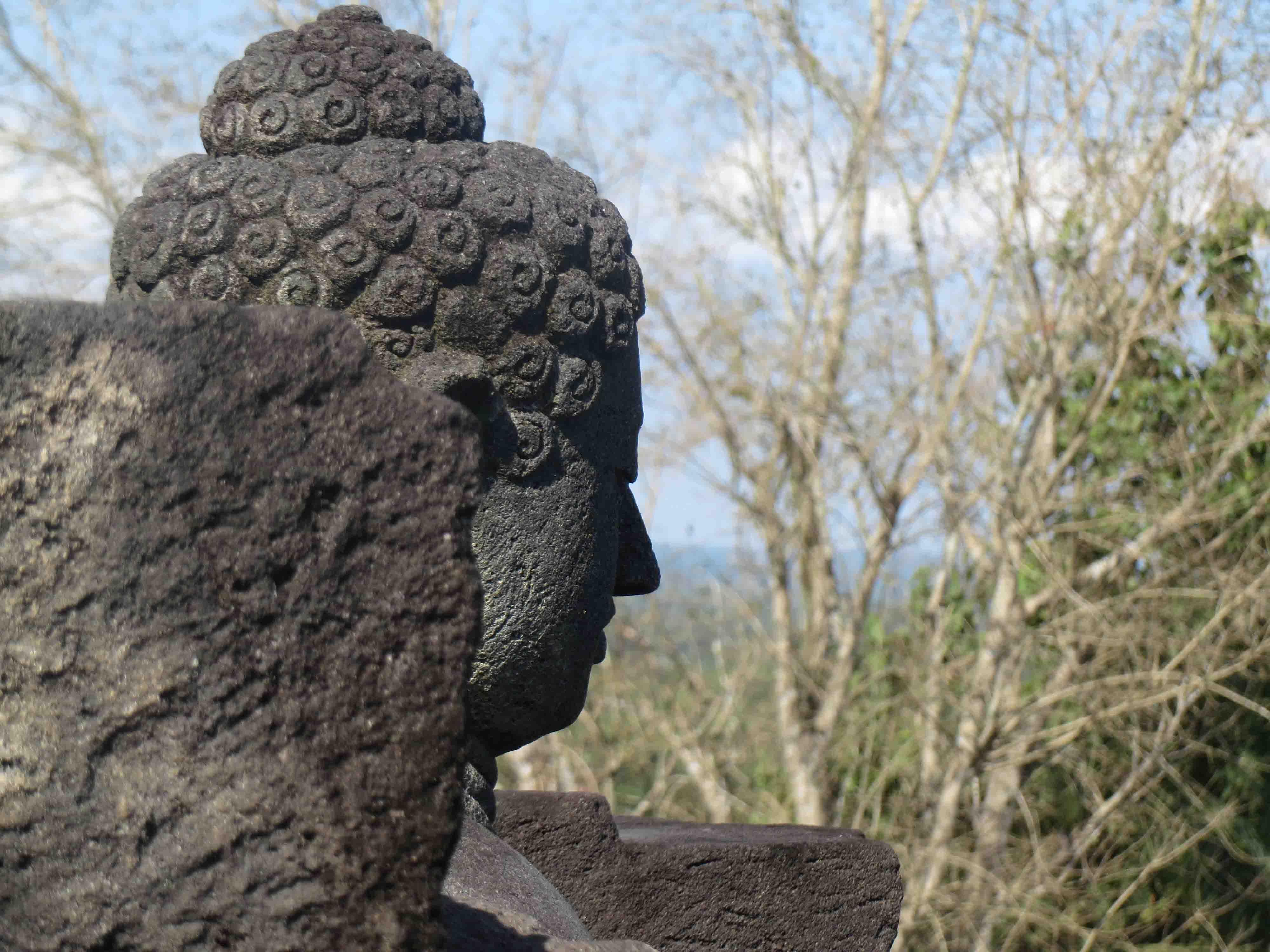 Tete de bouddhza