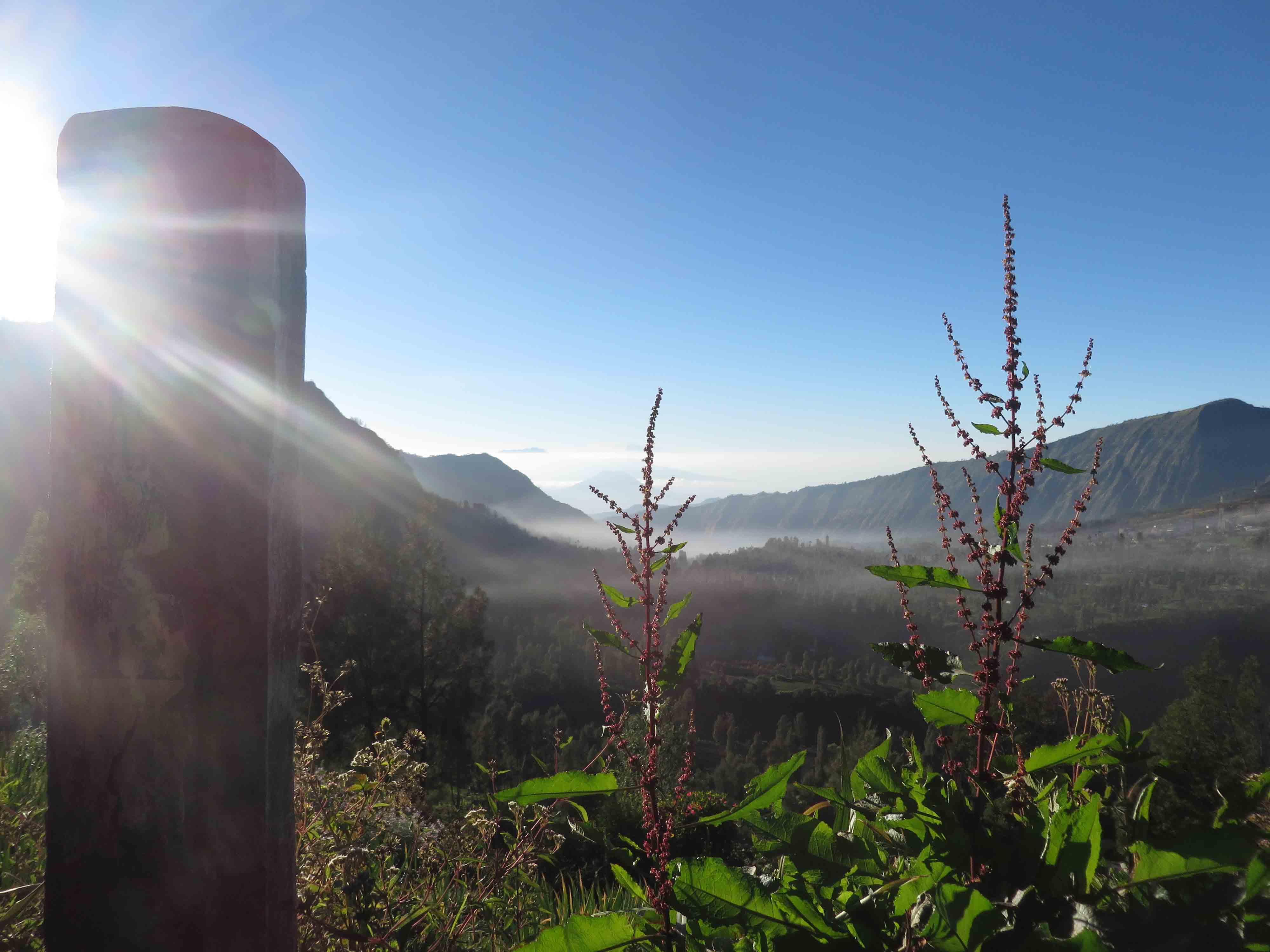 jolie paysage à Bromo