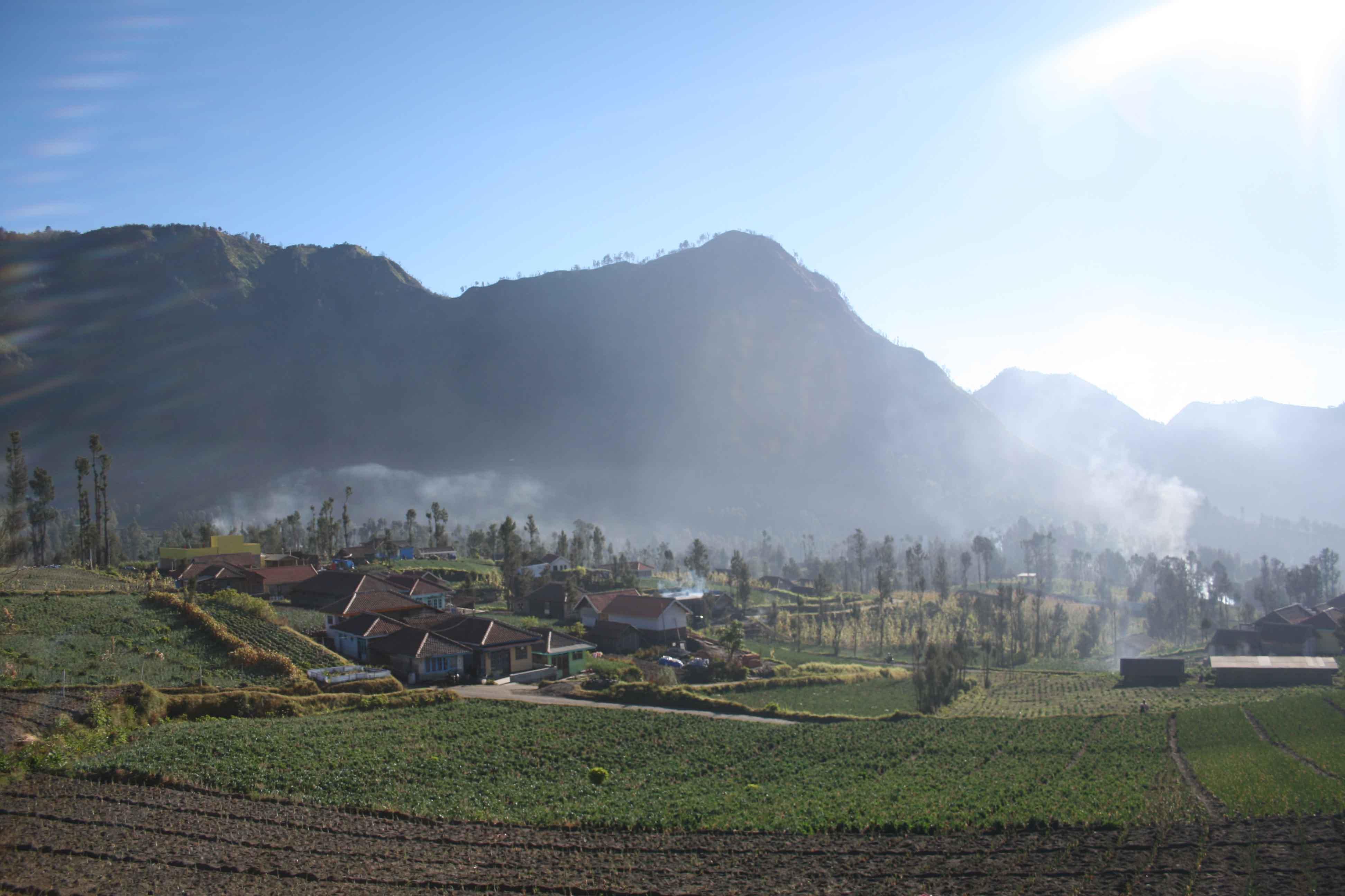Le village de Bromo