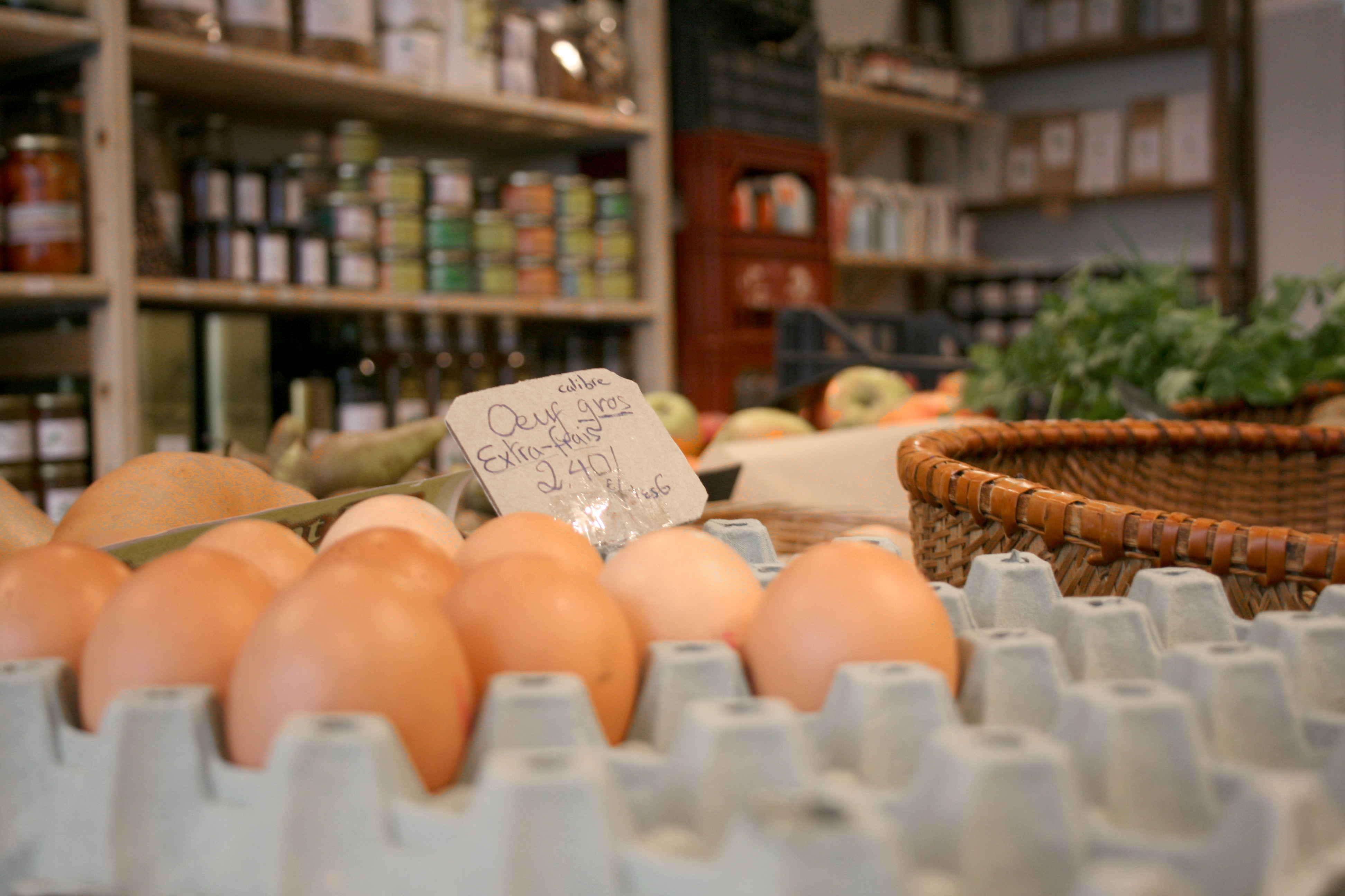 Eggs bio