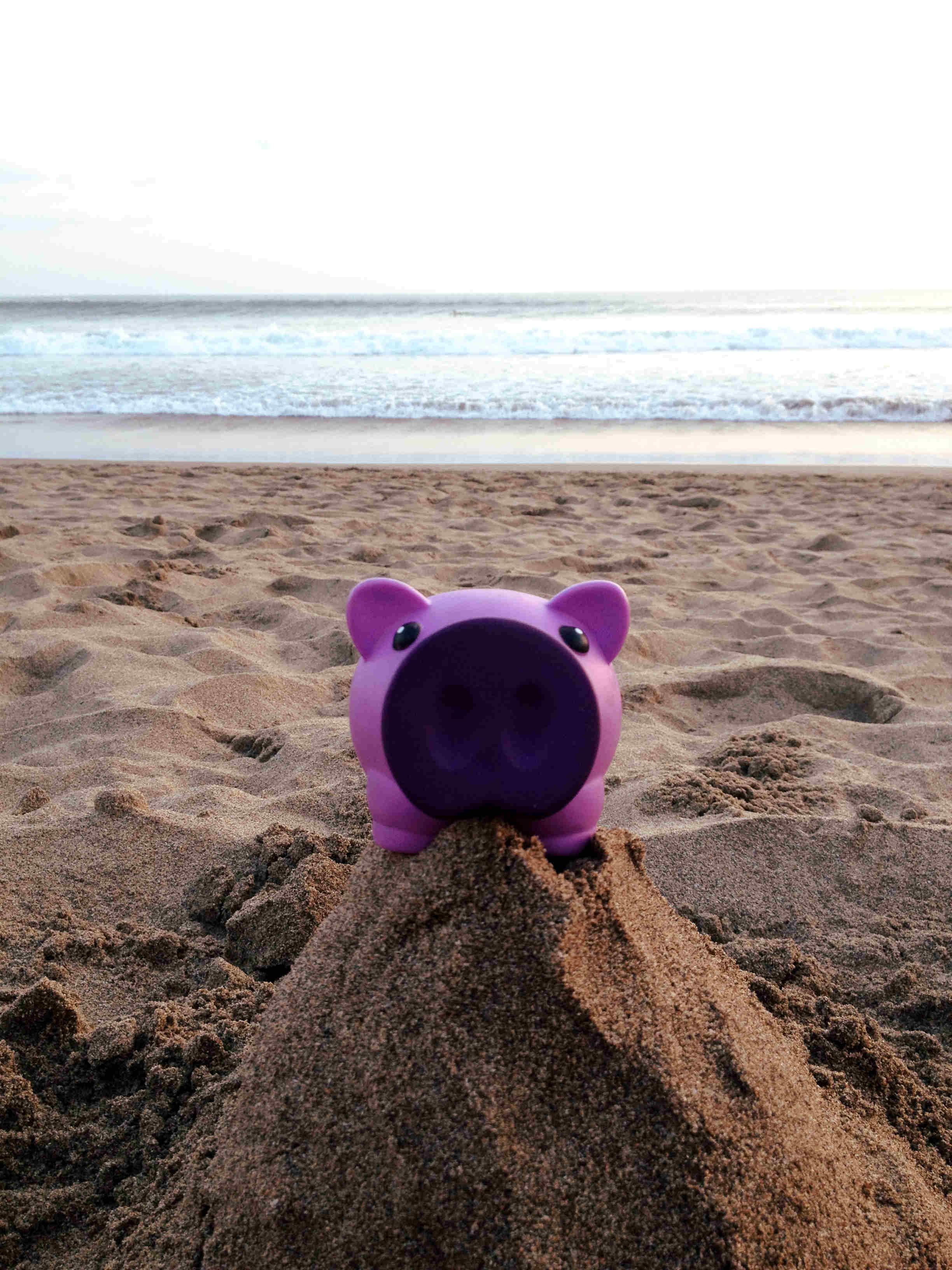 Kiwi à la plage