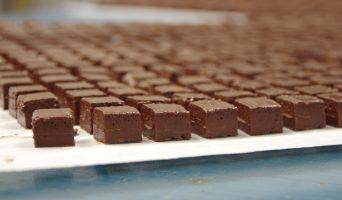 Dans les coulisses de la Maison du Chocolat