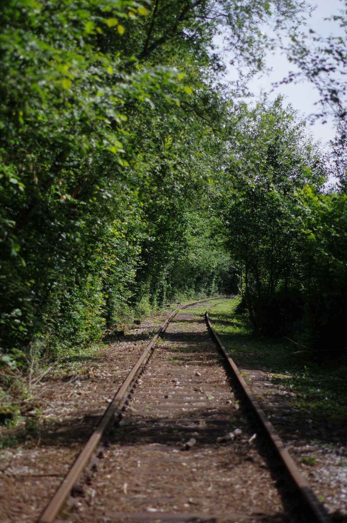 Velo rail bagnoles