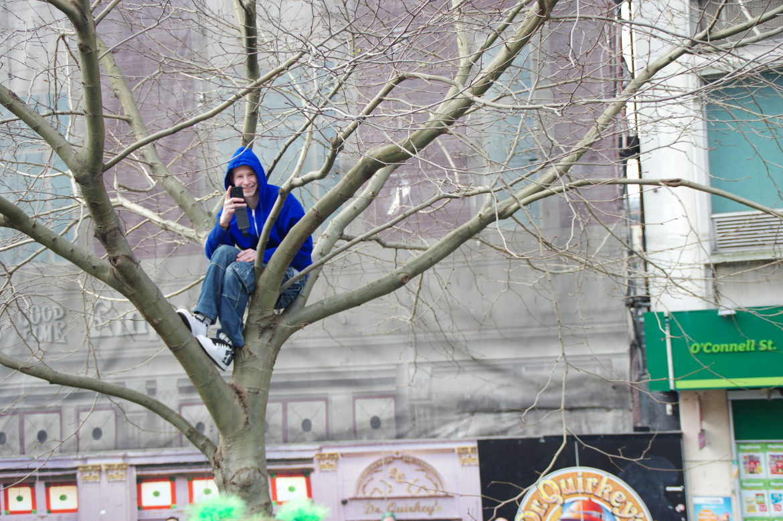 Happy man in a tree